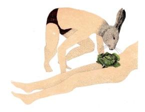 marion-fayolle coniglio conejo lapin